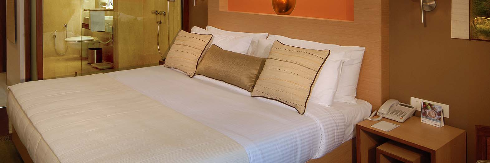 Hotel offers in Lavasa