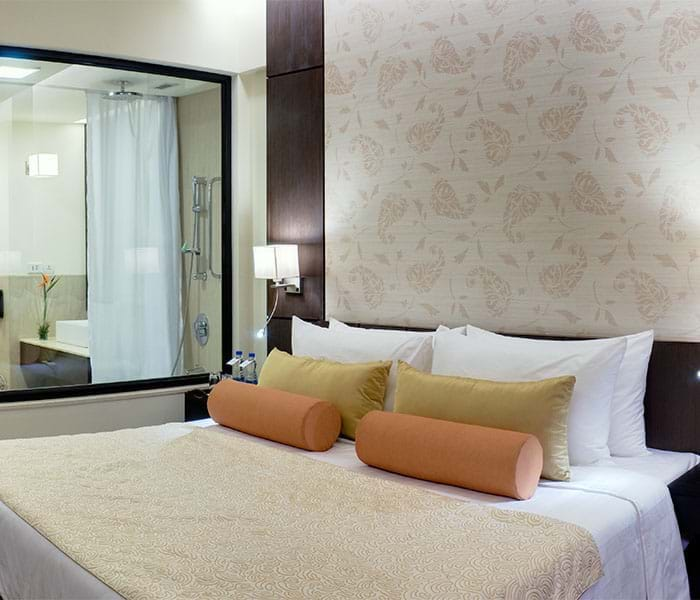 Hotels In Jaipur, Jaipur Hotels, Budget Hotels In Jaipur – Fortune Hotels